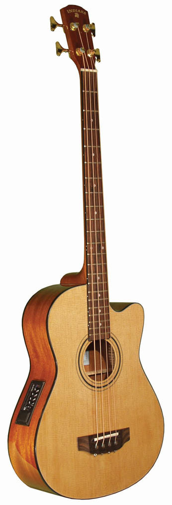 Indiana Acoustic Bass
